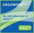 ORSC Organization & Relationship Systems at Work